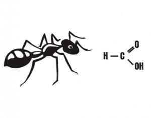 Kyselina Mravenčí 85% – Jen Osobní Odběr